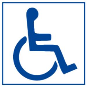 picto-handicap-moteur-300x300